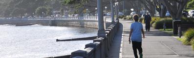 Woollahra Over 50s Walking Group