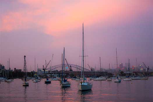 Rushcutters Bay at sunset