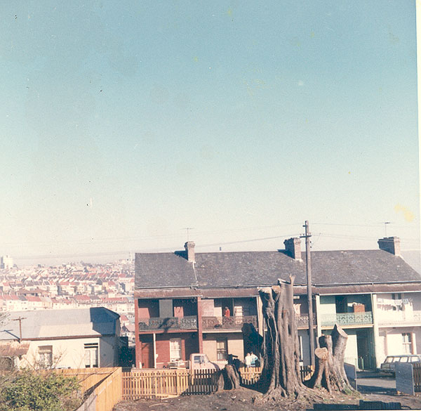 From an album of coloured photographs of Edgecliff dating from the mid 1960s - much of this area was extensively redeveloped during the 1970s with the construction of the Edgecliff Centre and the Edgecliff Interchange. Woollahra Libraries Digital Archive PF004610t.