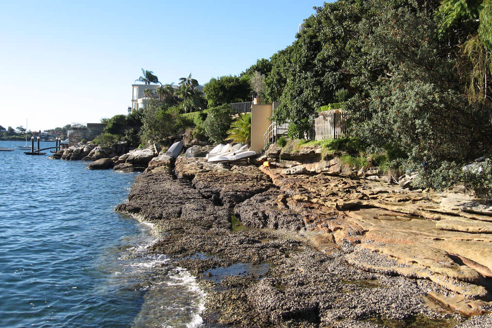 Parsley Bay Reserve | Woollahra Municipal Council