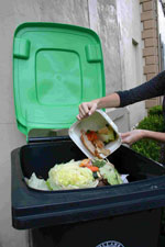 Food scraps being tipped into green wheelie bin