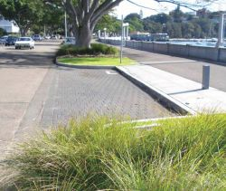 rose bay promenade parking bay