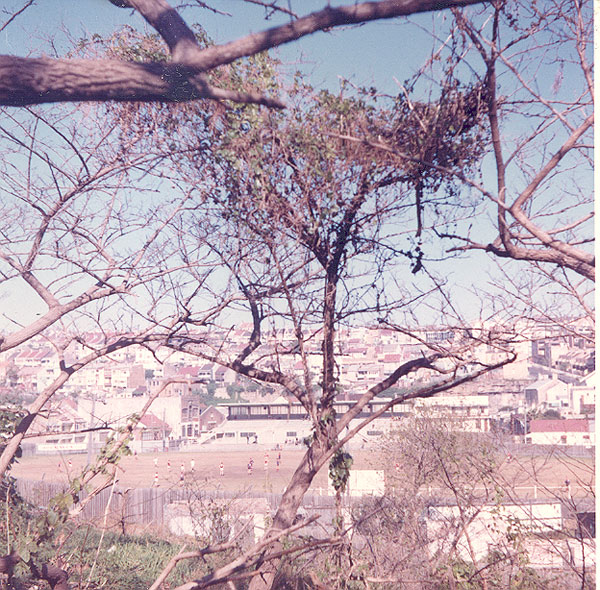 From an album of coloured photographs of Edgecliff dating from the mid 1960s - much of this area was extensively redeveloped during the 1970s with the construction of the Edgecliff Centre and the Edgecliff Interchange. Woollahra Libraries Digital Archive PF004610d.