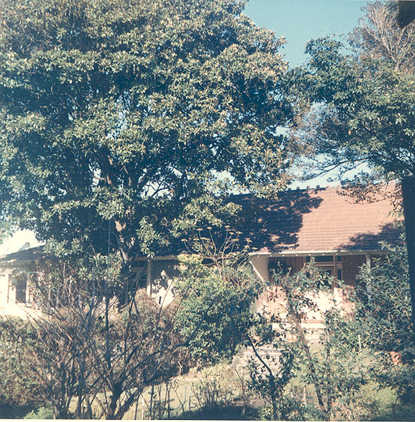 From an album of coloured photographs of Edgecliff dating from the mid 1960s - much of this area was extensively redeveloped during the 1970s with the construction of the Edgecliff Centre and the Edgecliff Interchange. Woollahra Libraries Digital Archive PF004610v.