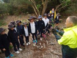 Schools Tree Day