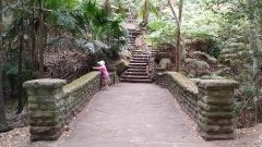 Local History Walk: Bellevue Hill's Heritage