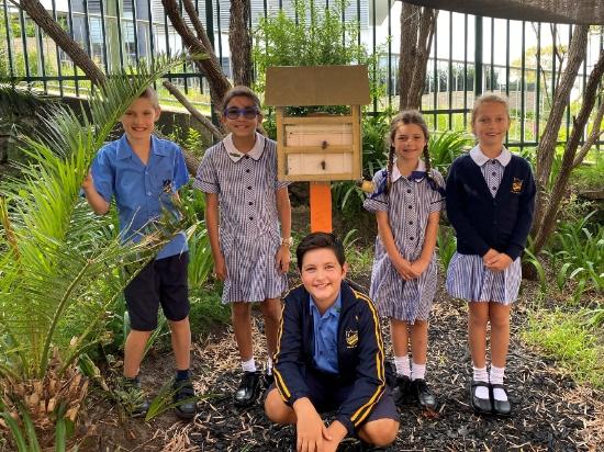 Kids with native bee hive