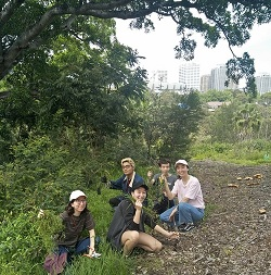 Bushcare volunteers