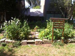 Windsor_St_Oraganic_Garden