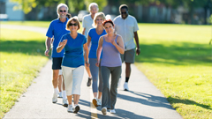 Over 50s Walking Group - Rushcutters Bay