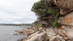 Woollahra Aboriginal Heritage Talk: Keeping Woollahra's Past Present - Aboriginal Community Connections and Heritage Protections
