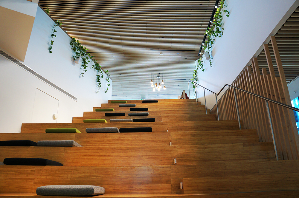 double open stairs double bay woollahra municipal council