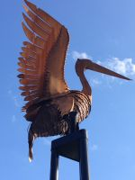 Pelicans-by-Folko-Kooper---2.jpg