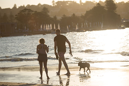 Two people on beach with dog running in water
