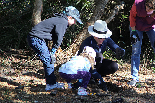 Over 1,000 seedlings planted at our 2019 National Tree Day event