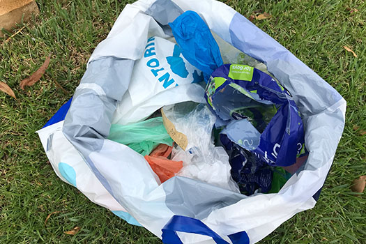 Collection of soft plastics contained within a plastic bag