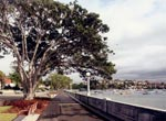 Newly restored and upgraded Rose Bay promenade, 2008