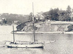 Postcard of Darling Point